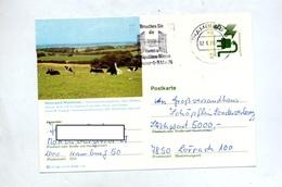 Carte Postale 40 Securité Flamme  Hambourg Foire Antiquité Illustré Parc Westensee Ttheme Vache - [7] République Fédérale