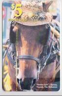 #09 - BAHAMAS-01 - HORSE - Bahamas