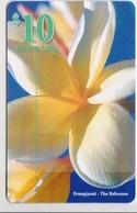 #09 - BAHAMAS-02 - FLOWER - Bahama's