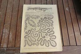 Revue - Journal Des Demoiselles 2 Rue Drouot Paris - 4°album Avril 1884 - 8 Pages - Stickarbeiten