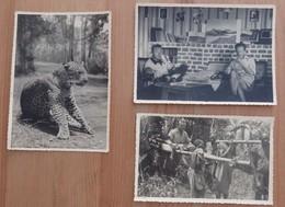 Congo Belge - Lot De 3 Cartes Postales - Voir 2 Scans - Belgian Congo - Other