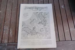 Revue-journal Des Demoiselles 2 Rue Drouot Paris 11°cahier Novembre 1880-8 Pages - Stickarbeiten
