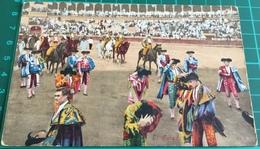 Bullfighting ~ El Saludo ~ Matadors ~ Bull - Corrida
