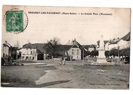BREUREY LES FAVERNEY LA GRANDE PLACE ANIMEE - Other Municipalities