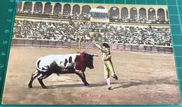 Bullfighting ~ Un Buen Par ~ Matadors ~ Bull - Corrida