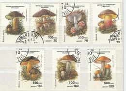 Padenstoelen - Madagascar (1960-...)