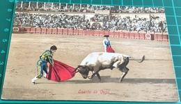 Bullfighting ~ Suerte De Capa ~ Matadors ~ Bull - Corrida