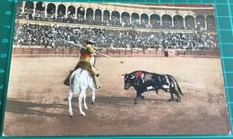 Bullfighting ~ Citando A Picur ~ Matadors ~ Bull - Corrida