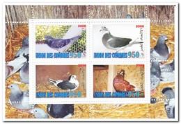 Comoren 2008, Postfris MNH, Birds - Comoren (1975-...)