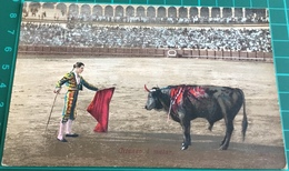 Bullfighting ~ Citando A Matar ~ Matadors ~ Bull - Corrida