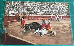 Bullfighting ~ Caida Del Picador ~ Matadors ~ Bull - Corrida