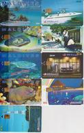 #09 - MALDIVES - SET OF 9 CARDS - STING RAY - TURTLE - Maldive