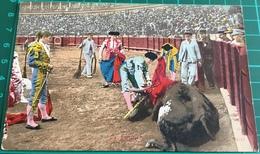 Bullfighting ~ La Puntilla ~ Matadors ~ Bull - Corrida