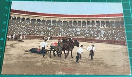 Bullfighting ~ Arrastre ~ Matadors ~ Bull - Corrida