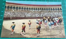 Bullfighting ~ El Paseo ~ Matadors ~ Bull - Corrida