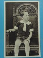 S.A.R Le Prince Baudouin - Familles Royales