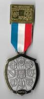 MEDAILLE Marche Populaire Organisée Par Le 110° RI En Allemagne En 1979 - DONAUESCHINGEN - Graveur CARL POELLATH - France