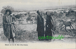 MAURITANIE - MAURES AU LAC DE MAL SUPERBE - Mauritanie