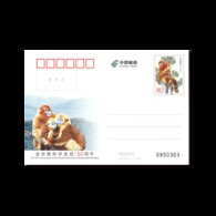 2019 CHINA JP-246 150 ANNI OF Discovery OF SNUB-NOSED MONKEYS P-CARD - 1949 - ... People's Republic