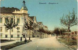 Temesvar Hungaria Ut - Roumanie