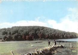 AUBRAC - Chasse Au Lac Des Salhiens - France