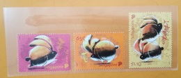2011 Singapore. Year Of Rabbit. Stamp Set Presentation Pack. MNH - Singapore (1959-...)