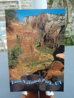 Cp Zion National Park UTAH  N°24 - Zion
