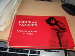 Porno Figurae Veneris   In 50 Pictures Morgens Toft  140 Pages - Books, Magazines, Comics