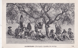 CPA /  Alemtejo (Portugal) Apanha Da Cortica    Ed SM  246  1910 - Portugal