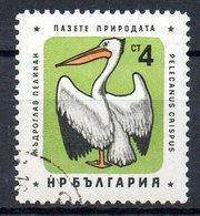 BULGARIE. N°1061 Oblitéré De 1961. Pélican. - Pélicans