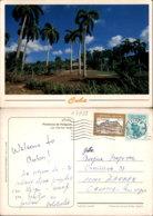 PROVINCIA DE HOLGUIN,CUBA POSTCARD - Postcards