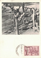 AOF - SENEGAL - IONYL - CARTE MAXIMUM - SENEGAL - TISSERAND - METIER. - Sudan (1954-...)
