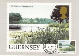 GUERNSEY 1984 - MiNr: 292  Maxicard St. Saviour - Guernsey