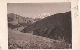 CPA 73 La Giettaz Et Le Mont Blanc Sa Belle Forêt De Sapins - Sonstige Gemeinden