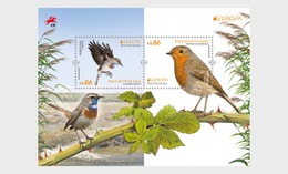 H01 Portugal 2019 Vögel Birds Europa 2019 Miniature Sheet MNH Postfrisch - 1910 - ... Repubblica