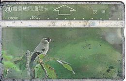 TAIWAN - Bird, ITA Telecard(D6020), CN : 606F, Used - Taiwan (Formosa)