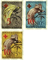 Ref. 34356 * MNH * - NETHERLANDS NEW GUINEA. 1955. BIRD OF PARADISE . AVE DEL PARAISO - Netherlands New Guinea