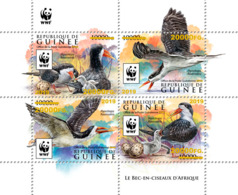 GUINEA REP. 2019 MNH WWF Skimmer Braunmantel-Scherenschnabel Ecumoire GOLD FOIL - OFFICIAL ISSUE - DH1918 - W.W.F.