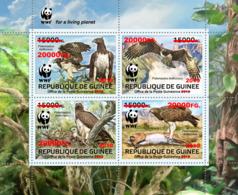 GUINEA REP. 2019 MNH WWF Birds Of Prey Greifvögel Raubvögel Oiseaux De Proie RED FOIL - IMPERFORATED - DH1918 - W.W.F.