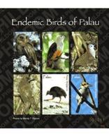 Ref. 224694 * MNH * - PALAU. 2007. BIRDS . AVES - Palau