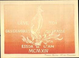 Artiste Cp Roche, Pierre, Lève Toi Des Cendres Du Passé, Kakadu - Animaux & Faune