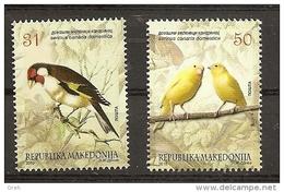 MACEDONIA 2015, BIRDS,PETS,SERINUS CANARIA,,,MNH - Vögel