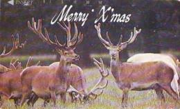 NOËL WEIHNACHTEN (2141) CHRISTMAS KERST NAVIDAD NATALE - Noel