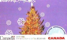 NOËL WEIHNACHTEN (2153) CHRISTMAS KERST NAVIDAD NATALE - Christmas