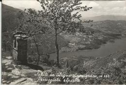 STAGNO DI CAMUGNANO (BOLOGNA) PASSEGGIATA ALPESTRE -FG - Bologna