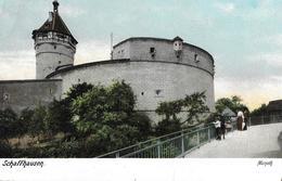 SCHAFFHAUSEN → Monoth Mit Touristen Anno 1905 - SH Schaffhausen