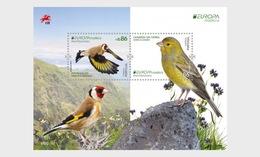 H01 Portugal 2019 Madeira - Birds Vogel Europa 2019 Miniature Sheet - 1910-... Republik