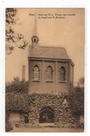 Niel  Grot V O.L.Vrouw V Lourdes En Kapel V St Antonius - Niel