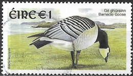 IRELAND 2002 New Currency Birds - E1 - Barnacle Goose FU - 1949-... Republic Of Ireland