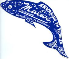 Autocollant Sticker Malevé International Vissen Hengelsport Sportvissen Pêche - Autocollants